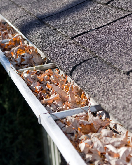 Gutters clogged and need repaired